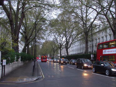 Straße mit Bäumen (Bild: T. Pugh, KIT)